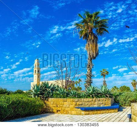 The Abraham Shechterman Garden is one of the highest points in old Jaffa overlooking its main landmarks such as St Peter's Church Tel Aviv Israel.