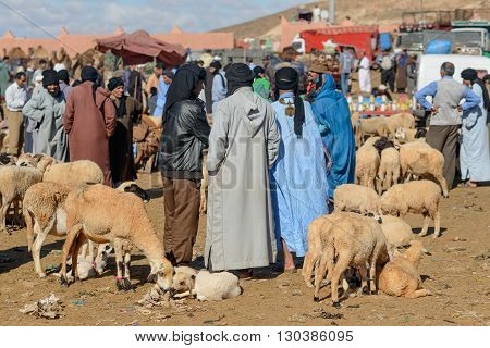GUELMIM MOROCCO - OCTOBER 31 2015: Sheep for sale at the weekly market in the south Moroccan town of Guelmim.