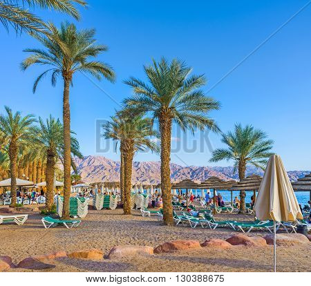 EILAT ISRAEL - FEBRUARY 23 2016: The cozy beach with many palms and sunshades on February 23 in Eilat.