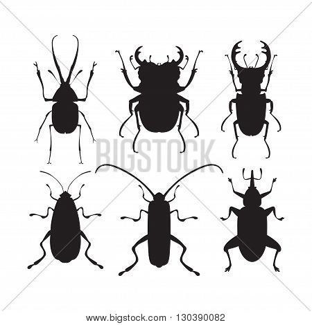 Vector illustration of bug silhouettes. Isolated on a white background. Beetle icons. Insect set.