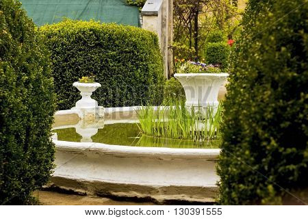 Fountain with flower pots in the garden among the hedges