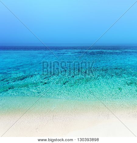 Beach background / Untouched tropical beach blue color