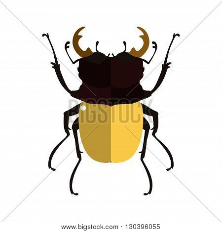 Vector illustration of a stag beetle. Isolated on a white background.