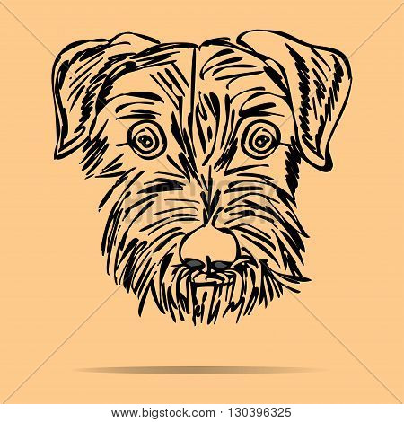 Puppy. Scotch terrier On a colored background