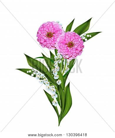 Autumn asters flower isolated on white background