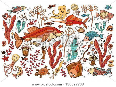 Colored Set of elements on the tropic sea life. Marine collection: batoidea fish, jellyfish, shark, swordfish, corals, turtles, shrimp, clam, shell, squid, crab.