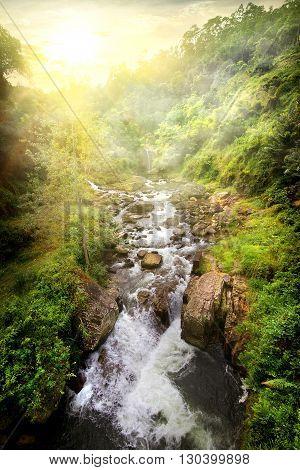 Fast tropical river at sunny sunrise, Sri Lanka