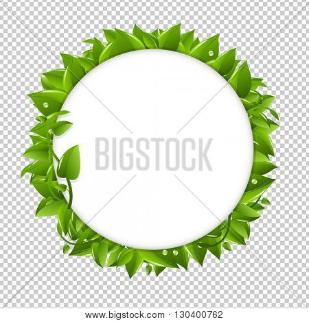 Circle With Green Leafs, Isolated on Transparent Background, Vector Illustration