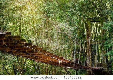 View of long suspension bridge in sun rays. Khao Sok National Park Surat Thani Province Thailand. Focus on the center of suspension bridge
