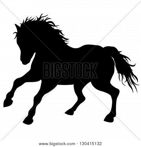 Black horse runs  silhouette isolated vector illustration