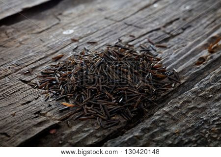 Wild brown rice, on wooden surface.
