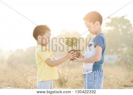 Boys Carry Little Plan
