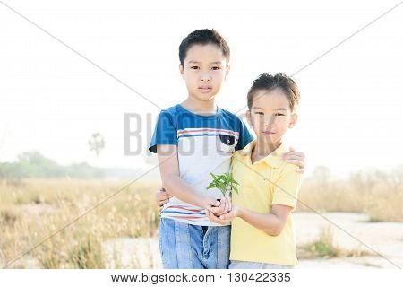 Boy Carry Little Plant
