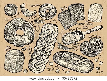 Set of bread and bakery products. Vector illustration