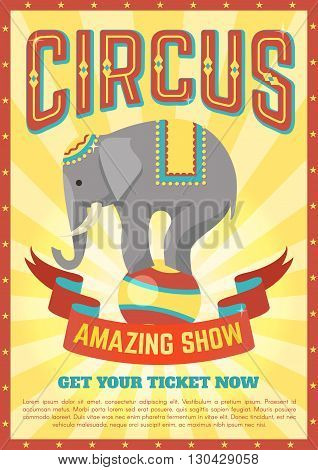 Flat circus poster with description of elephant performances and ribbon with the inscription amazing show vector illustration