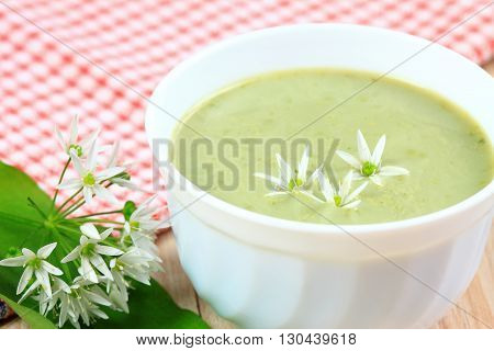 Wild bear garlic. Spring soup with bear allium flower on top.