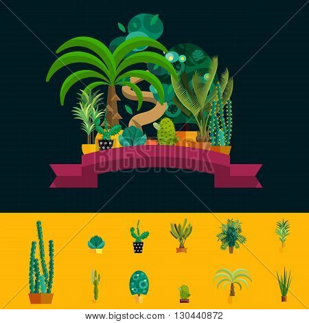 Desert flowers.Exotic plant, bush, palm tree and cactus vector set.Desert potted flowers.Flat illustration of  desert flowers.Houseplants from desert.Set of flowers in pot.Tropical and desert flowers