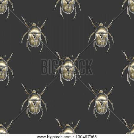 Beetle. Watercolor seamless pattern 4. Hand-drawn insect.