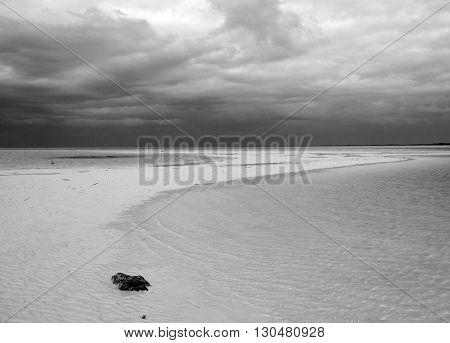 Isa Blanca Beach on Chacmuchuk Lagoon at Cancun Mexico