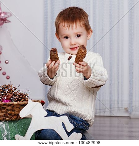 Portrait Of A Cute Little Boy With Fir Cones.