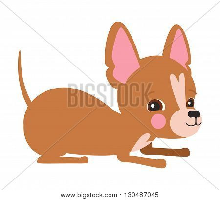Illustration of cute dog Chihuahua. Nice puppy for greeting card pet shop or veterinary clinics. Dog of breed Chihuahua. Vector dog illustration for greeting card. Dog Chihuahua play