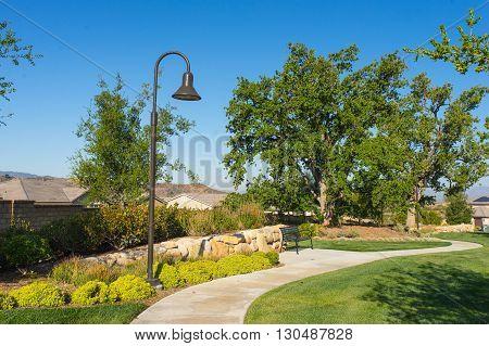 Street Light Sidewalk In Suburbs