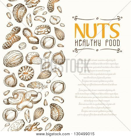 Vector background with nuts arranged vertically. Vector  illustration for your design