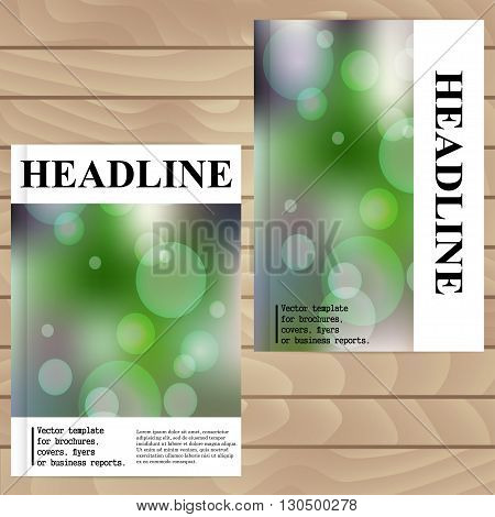 Vector Template For Brochures, Covers, Flyers Or Business Reports. With Blur Effect.