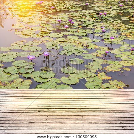 terrace wood with beautiful waterlily or lotus flower in pond.