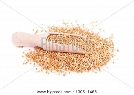 Mix of different varieties of millet, food for parrots, isolated on white background