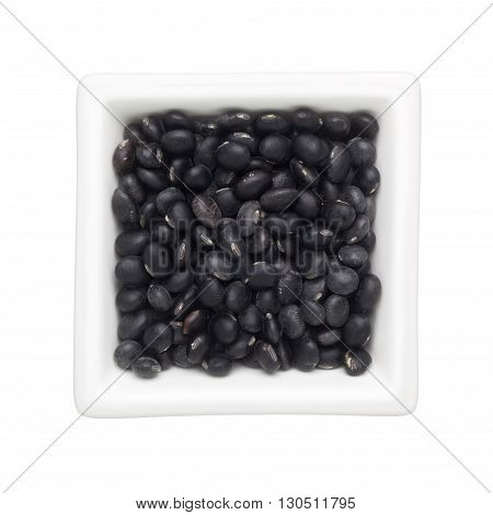 Black turtle beans in a square bowl isolated on white background