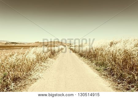 Asphalt Road between Wheat Fields leading to the Mount Etna in Sicily Retro Image Filtered Style