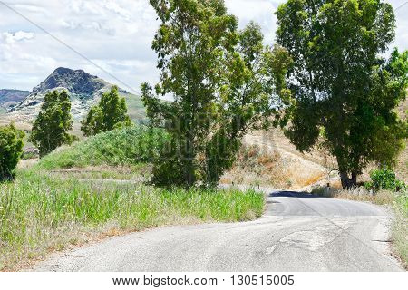Old Broken Road between Spring Fields of Sicily