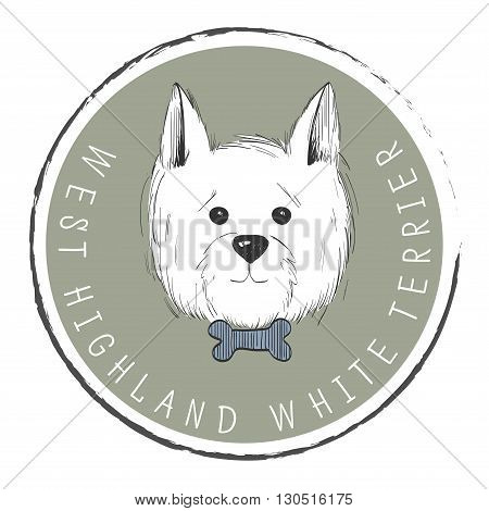 west highland white terrier scetch.Can be used like post card background banner or logo
