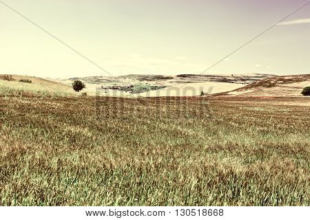 Wheat Fields on the Hills of Sicily Retro Image Filtered Style