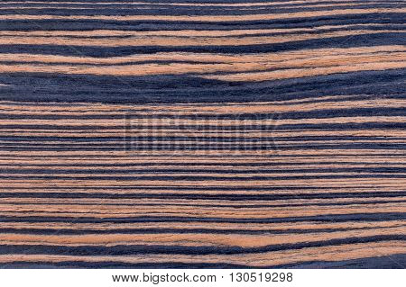 Texture of rich grain striped ebony veneer