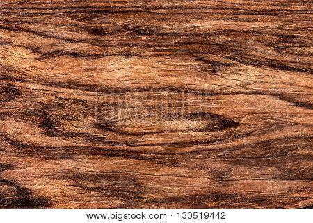 Texture of rich grain cocobolo tropical veneer