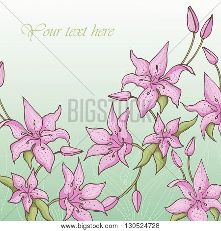 Pink lily is on a blue background. Card with blooming lily. Vector illustration.