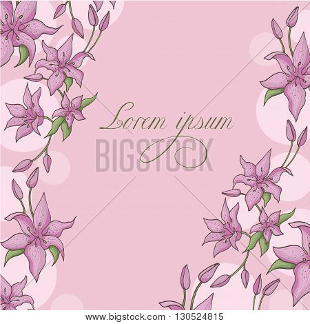 Pink lily isolated on a pink background. Card with blooming lily. Vector illustration.
