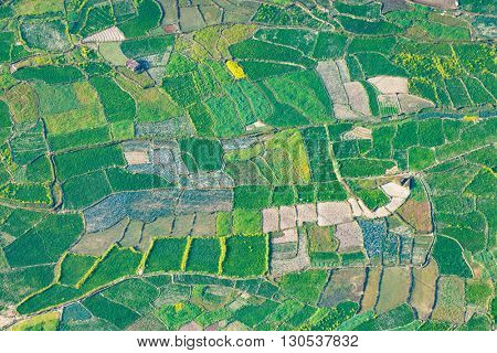 Paddy fields aerial view in Nepal