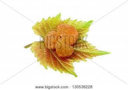 The raisins on a leaf of grapes.Isolated on white background.