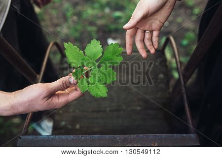 Photo pair of hands near the swings. close view