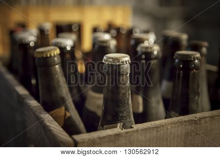Old dusty bottle of beer in a wooden case