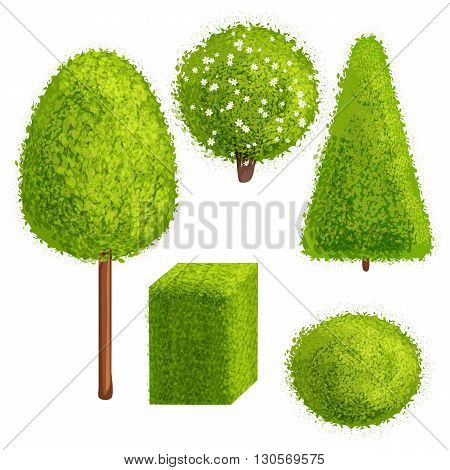 Set green trees and bushes of different forms. Vector illustration. Cartoon style. Deciduous trees.
