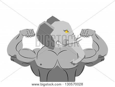 Strong Angry Elephant. Aggressive Evil Beast Fitness. Wild Animal Athlete With Huge Muscles. Bodybui