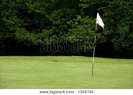 Mastro de golfe