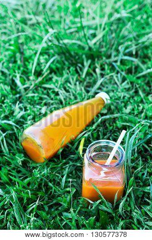 Bottled orange carrot juice on grass background