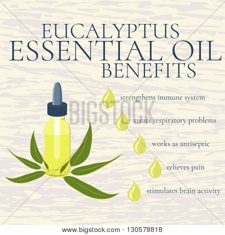 Benefits of eucalyptus essential oil. infographics. Reasons to use eucalyptus essential oil. A bottle of eucalyptus oil. Isolated vector illustration.