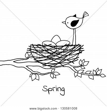 Little bird in the nest with eggs. Vector black and white illustration.