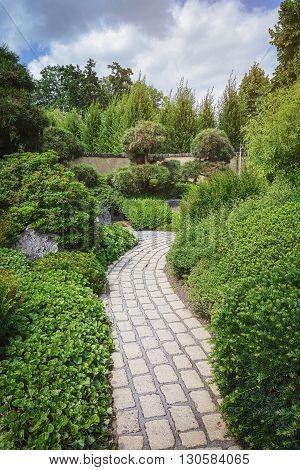 Garden stone path along the ornamental shrubs.